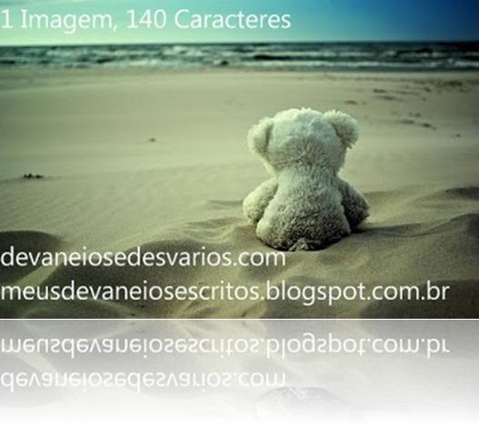 Urso_Praia
