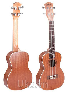 dan ukulele concert gia re