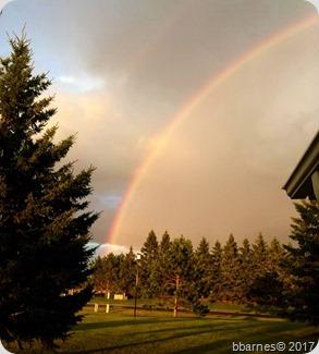 Rainbow half 08042017