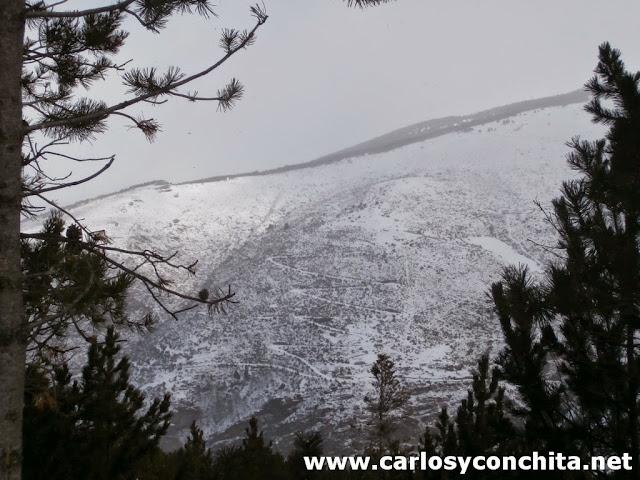 Vista desde la estacion de ski de Puigmail