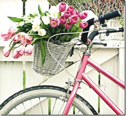 imágenes de bicicletas con flores (8)