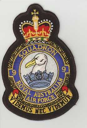 RAAF 009sqn crown.JPG