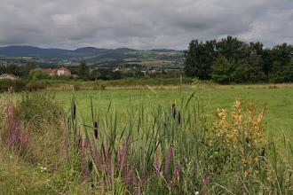 Photo: J24 : Plaine du Forez, entre Chalain d'Uzore et Champdieu