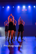 Han Balk Voorster Dansdag 2016-4066-2.jpg