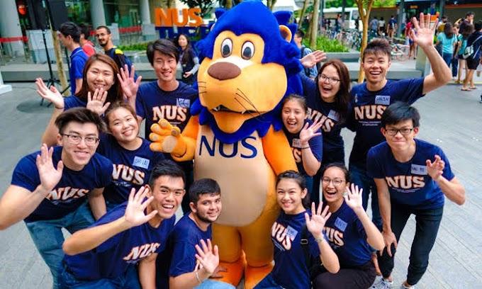 Summer and Winter Program in NUS Singapore