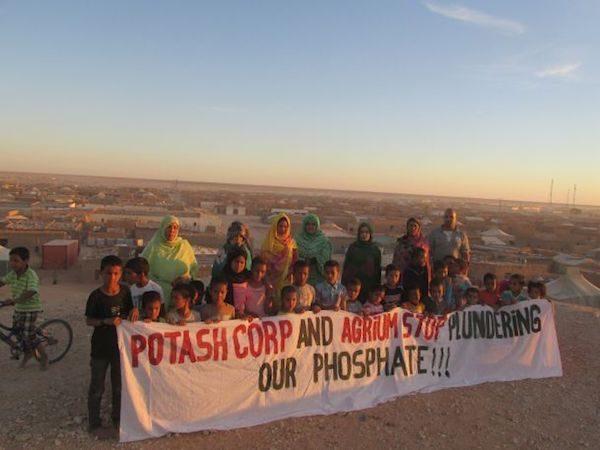 """Western Sahara Campaign-NZ insta al gobierno de Nueva Zelanda a detener los envíos de """"fosfato de sangre"""" del Sáhara Occidental"""