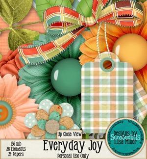 everydayjoy4