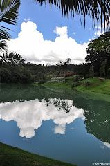 Instituto de Arte Contemporânea em Inhotim - Brumadinho, Minas Gerais. Fotos do evento Inhotim. Foto numero 6.