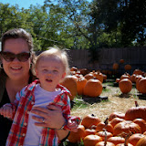 Pumpkin Patch - 115_8244.JPG