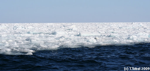 The Ice. Spitzbergen.