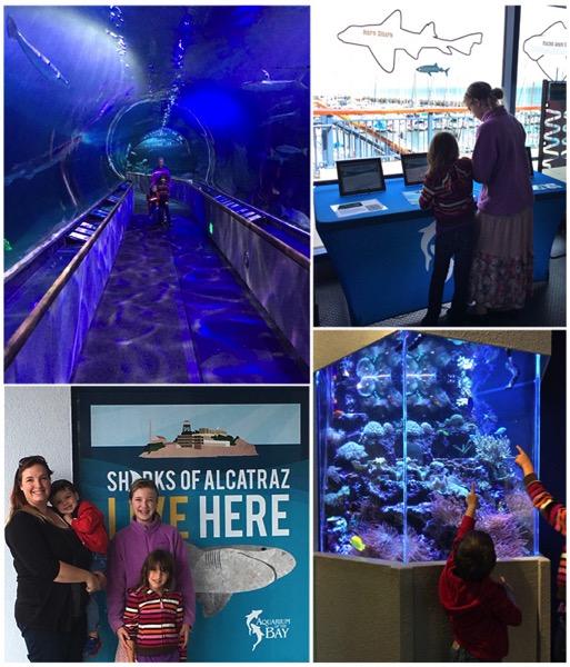 Aquarium at the Bay on Pier 39