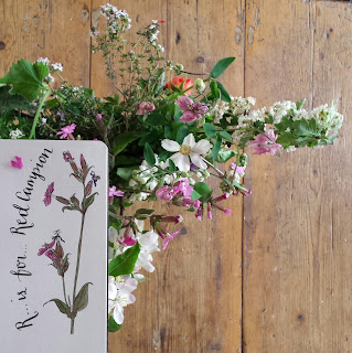 Red Campion and wild bouquet :: www.AliceDrawsTheLine.co.uk