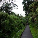 06-23-13 Big Island Waterfalls, Travel to Kauai - IMGP8876.JPG