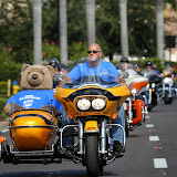 17th Annual Great Teddy Bear Run