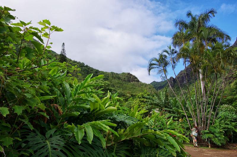 06-26-13 National Tropical Botantial Gardens - IMGP9463.JPG