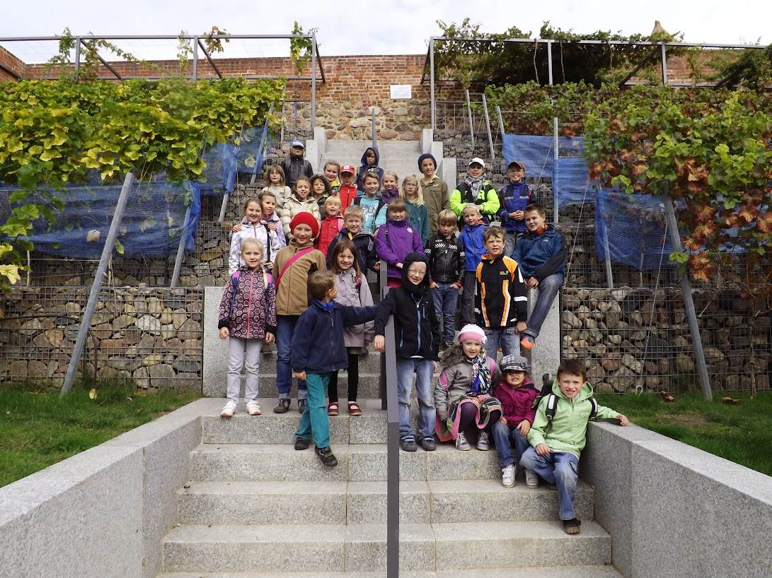 Schulfoto im Weinberg - Die Schüler der klassen 1 bis 6 auf der Laga. (Foto: A.M.)
