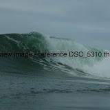 DSC_5310.thumb.jpg