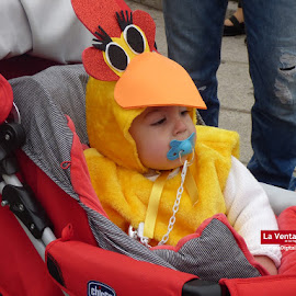 Desfile Escolar de Carnaval de Montijo