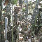 Botanická 091.jpg