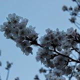 2014 Japan - Dag 1 - marjolein-IMG_0177-0105.JPG