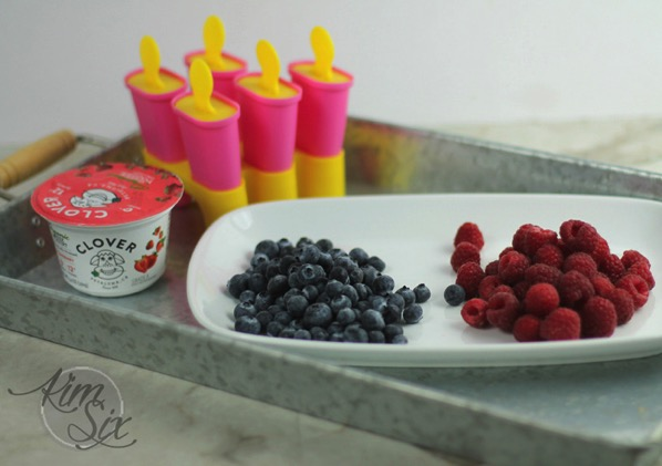 Blueberry Strawberry Yogurt popsicles