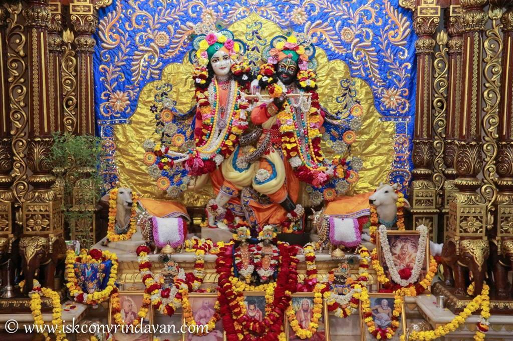 ISKCON Vrindavan Sringar Deity Darshan 03 Feb 2016 (7)