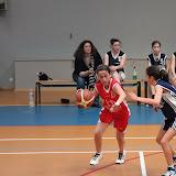 basket 209.jpg