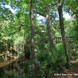 04-04-12 Hillsborough River State Park - IMGP9688.JPG