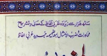 best arabic to urdu dictionary