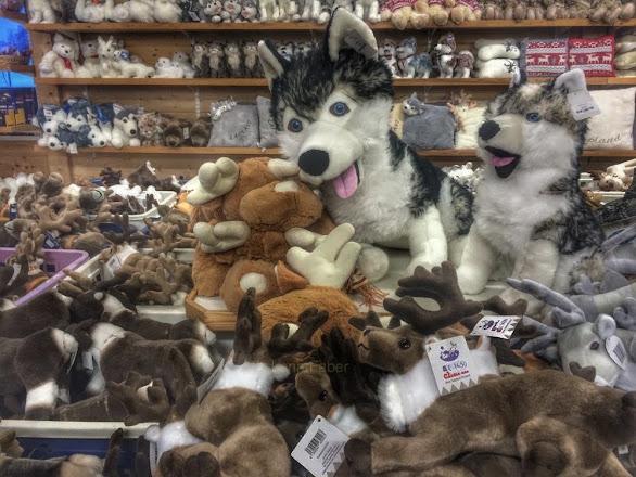 Photo: Arctic shopping