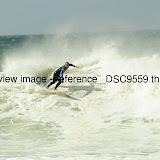 _DSC9559.thumb.jpg