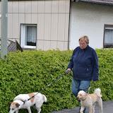 17. Mai 2016: On Tour in Pechbrunn - DSC_0300.JPG