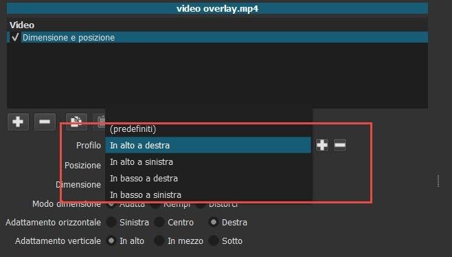 profilo-video