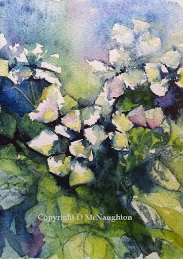 Yesterday, today, & tomorrow. Ink and watercolour. Artist Dianne McNaughton