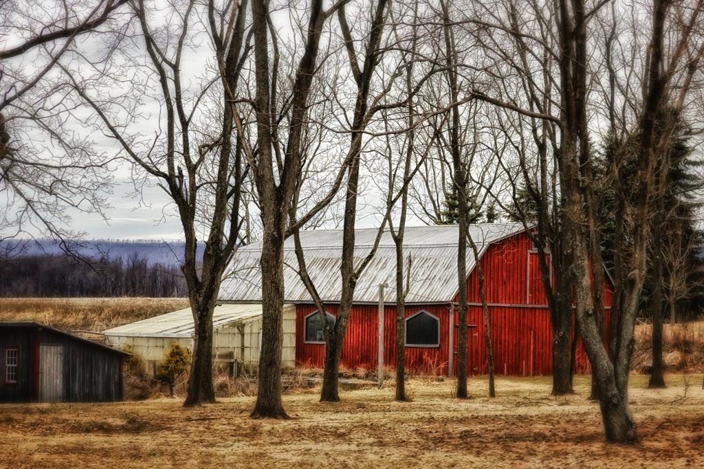 """""""Roadside Barn"""" by Roy Kropp -- 1st Place Print"""