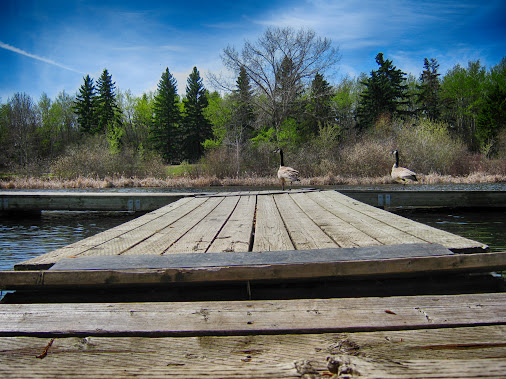 Mirror Lake Dock  133/365 #LeadingLinesMonday +Leading Lines Monday curated by +Pam Boling +Andreas Levi...