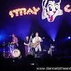 20080903 Stray Cats 060.jpg