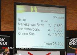 Han Balk Finale DE 2014-20140607-2417.jpg