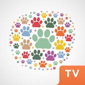 Lifestyle for pets TV
