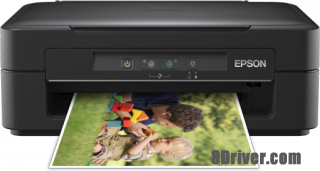 download Epson XP-103 printer's driver