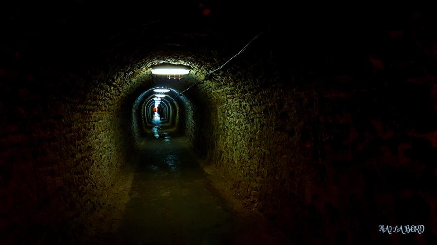 tunel salina turda