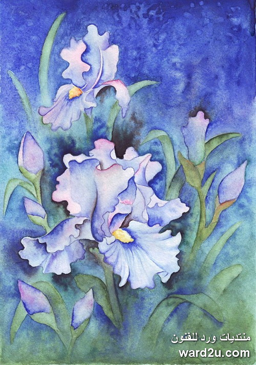 زهور بالالوان المائية  Zhanna Kabina