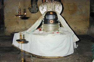 Thiruvazhundur Temple Main Deity Vedapureeswarar