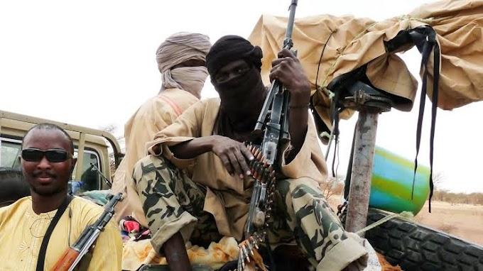 El terrorismo en el Sahel: el espejismo del yihadismo fulani.