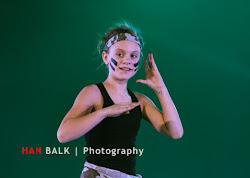 Han Balk Voorster Dansdag 2016-3665.jpg