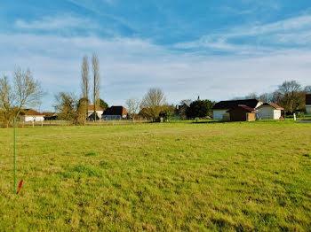 terrain à Sévignacq (64)