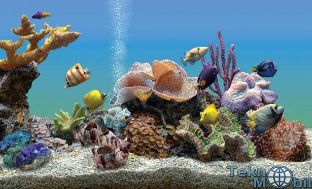 Marine Aquarium v3.1.5563 Full