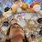 Eynat Nir Mishor's profile photo