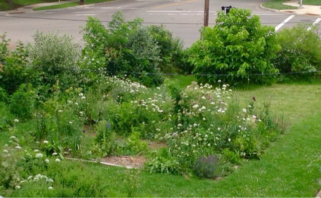 8 Patterns For A Permaculture Kitchen Garden Make Over Lillie