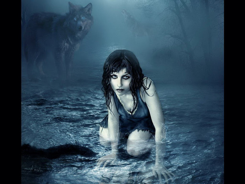 Wolf Child, Mystery